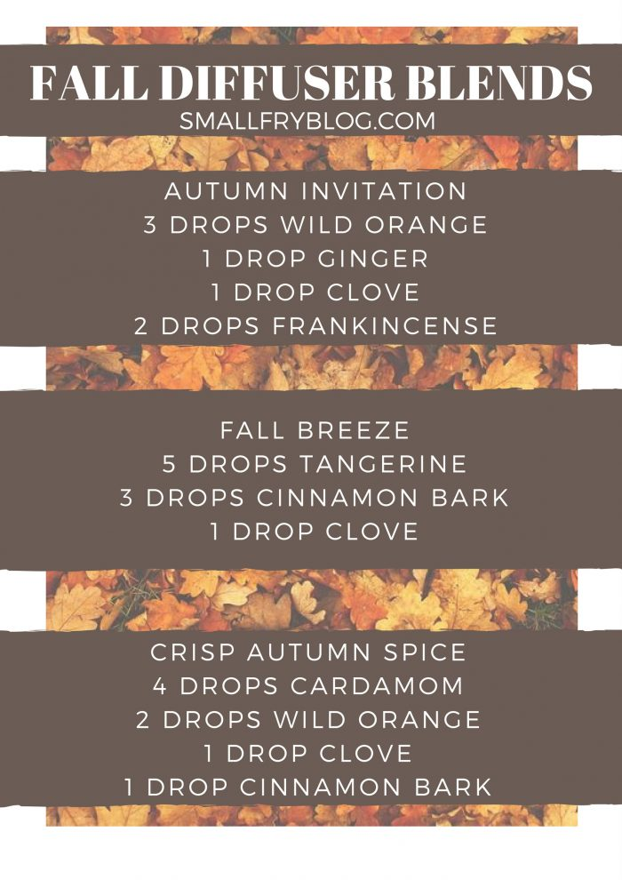 fall-blends-smallfry