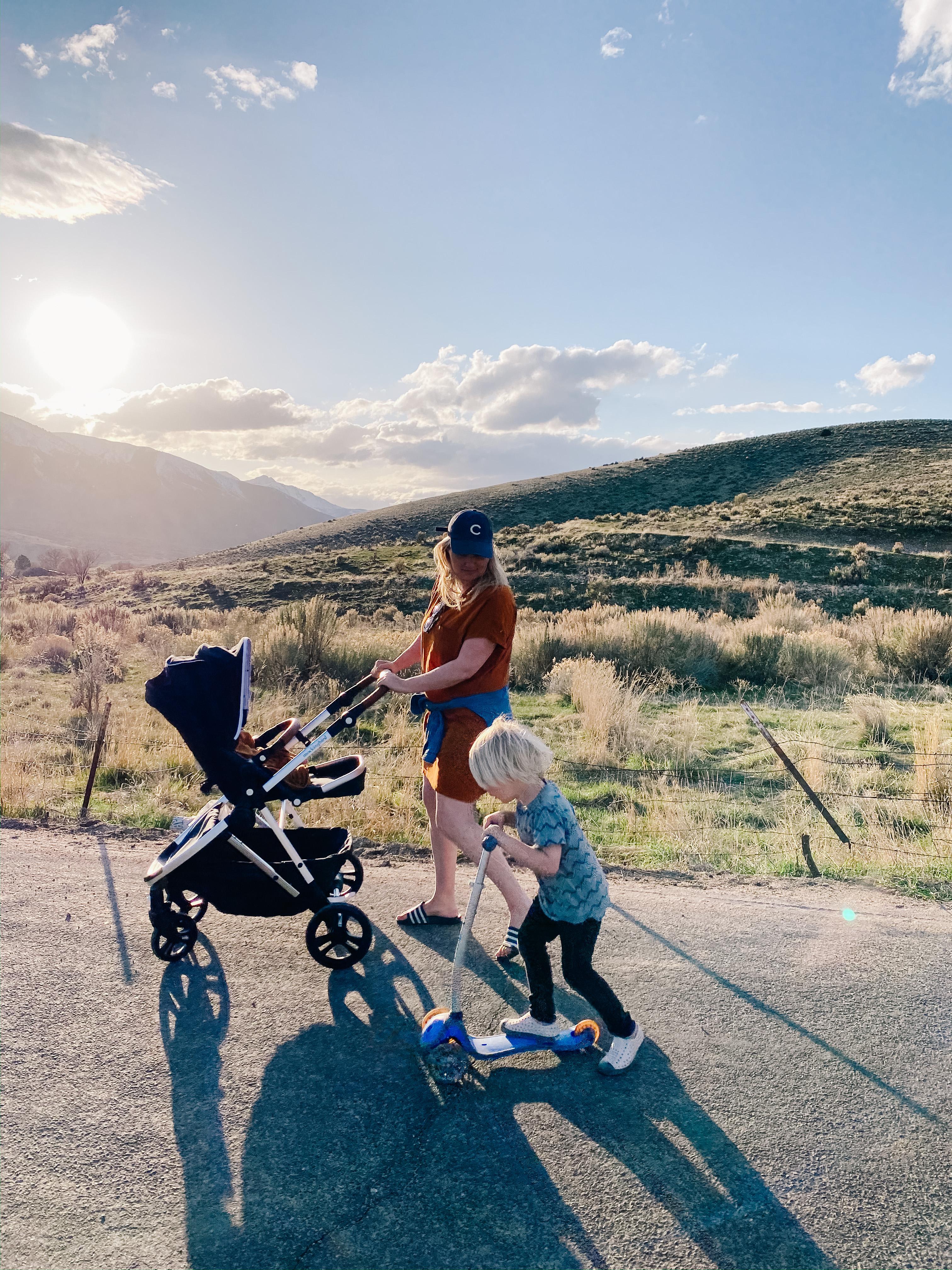 Mockingbird Stroller | Small Fry